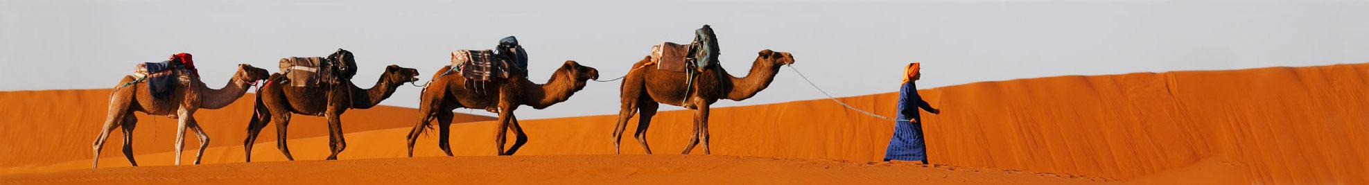 Марокко: від пустелі до океану