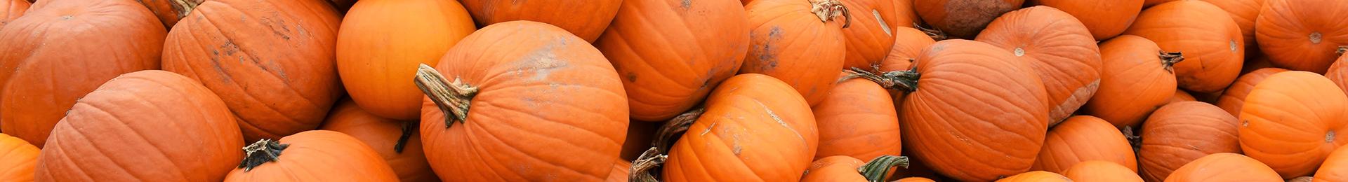 Halloween у Колочаві