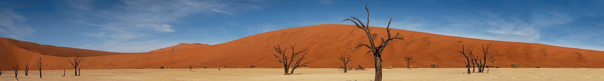 На джипах по Намібії